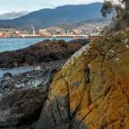 Derwent Shorescapes