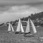 Sails on the Derwent