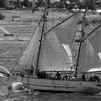 Rhonda H under sail