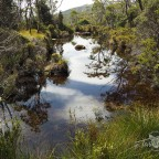 Tasmanian Tarn trek