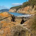 Alum Cliffs Amble